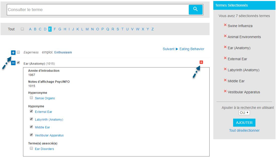 Capture d'écran du localisateur de termes avec une flèche vers le signe plus situé à gauche et le signe plus situé à droite pour ajouter le terme et tous les termes les plus proches à la recherche