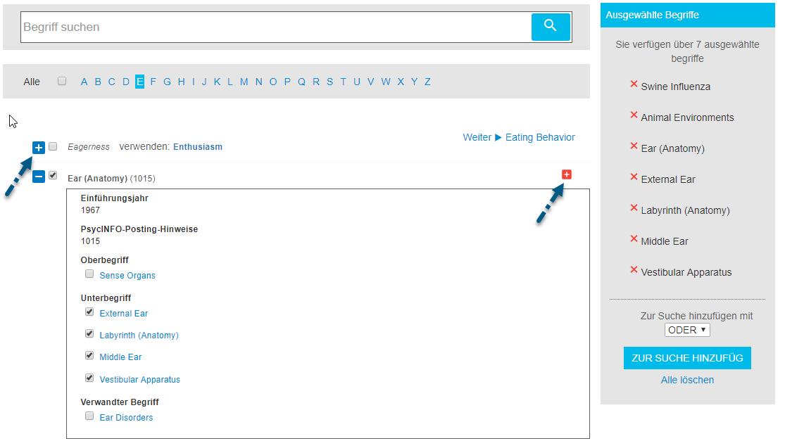 Screenshot der Begriffsuche mit Pfeil zum linken Pluszeichen-Umschalter und Pfeil zum rechten Pluszeichen, das zum Aufnehmen aller nah verwandten Begriffe in die Suche dient
